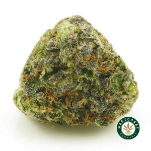 Buy Rockstar Kush at Wccannabis Online Shop