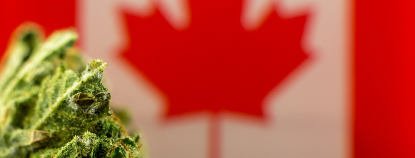 Marijuana Possession Laws in Canada