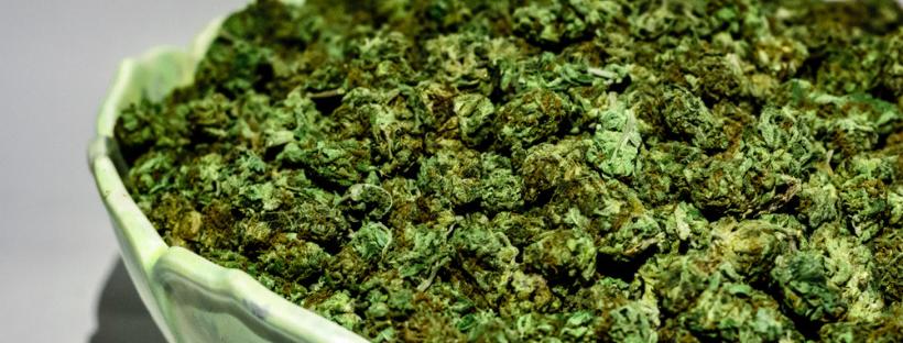 Ontario Marijuana Laws