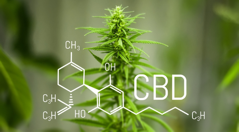 Is CBD Really That Good for You