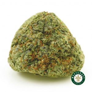 Buy Cannabis Blue God at Wccannabis Online Shop