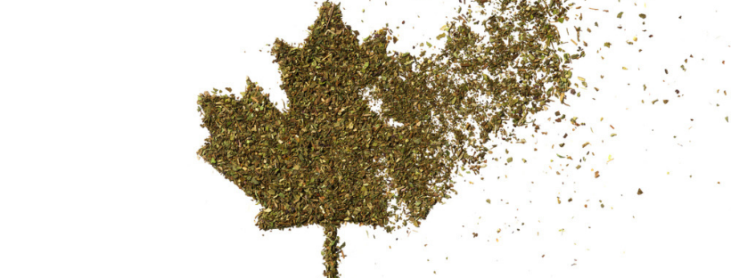 Weed Laws British Columbia