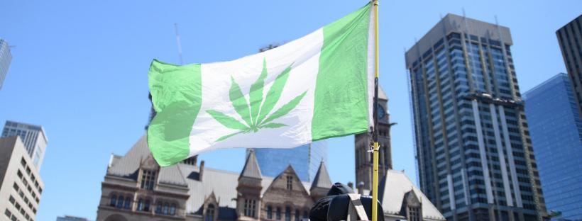 Marijuana Laws in Toronto