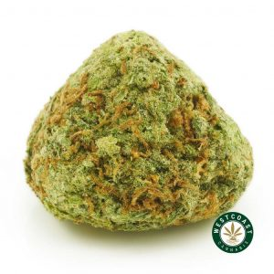 Buy Cannabis Alien OG at Wccannabis Online Shop
