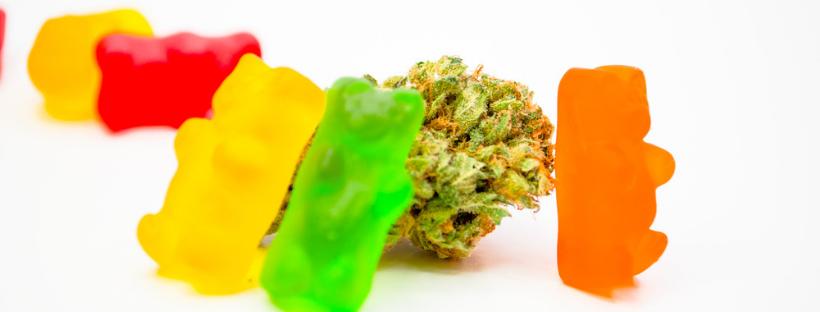 Where to Buy Marijuana Edibles