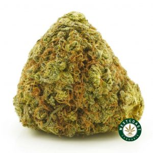 Buy Cannabis Platinum Kush at Wccannabis Online Shop
