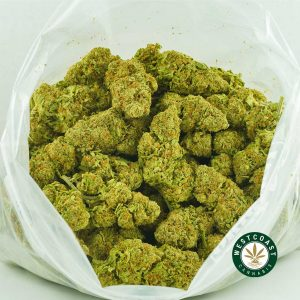 Buy Cannabis Cookies and Cream at Wccannabis Online Shop