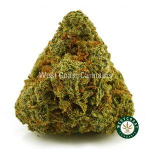 Buy Cannabis Lemon Kush at Wccannabis Online Shop