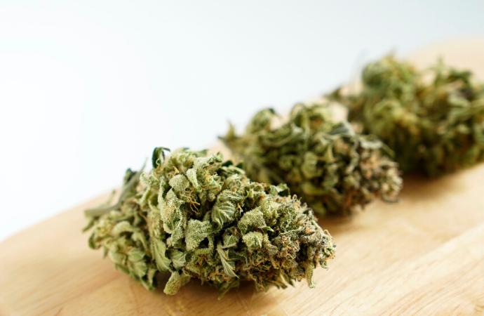 5 Indica Cannabis Strains for Sativa Fans
