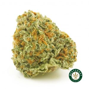 buy cannabis pineapple godbud online