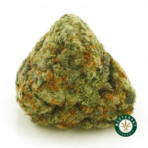 Buy Cannabis Purple Space Cookies at Wccannabis Online Shop