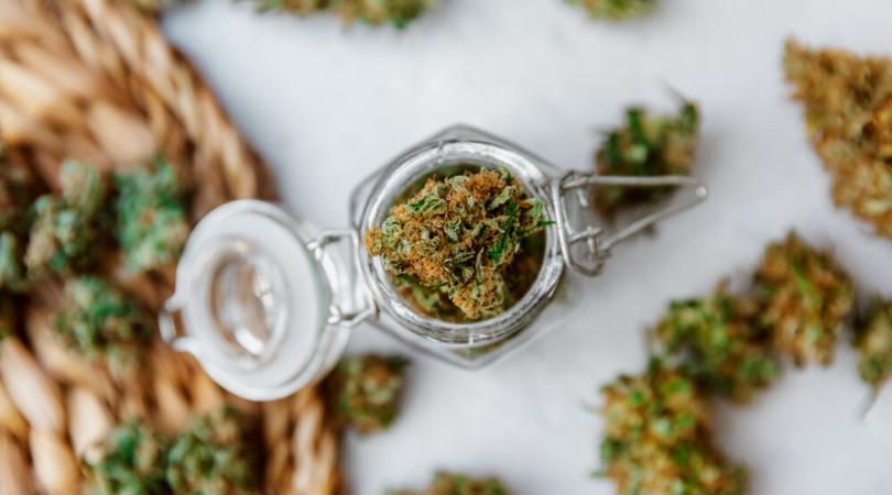 What Is A Marijuana Strain