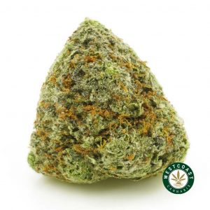 buy cannabis atf online