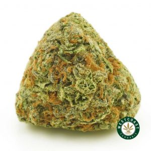 Buy Cannabis Super Lemon Haze at Wccannabis Online Shop