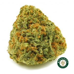 buy cannabis pink bubba online