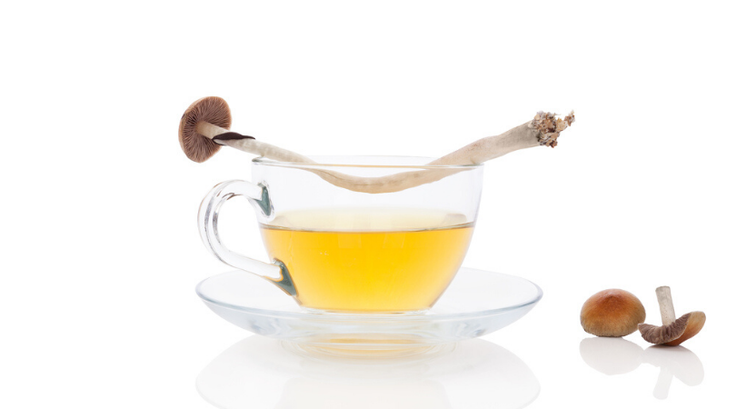 Here's How to Make Delicious Magic Mushroom Tea