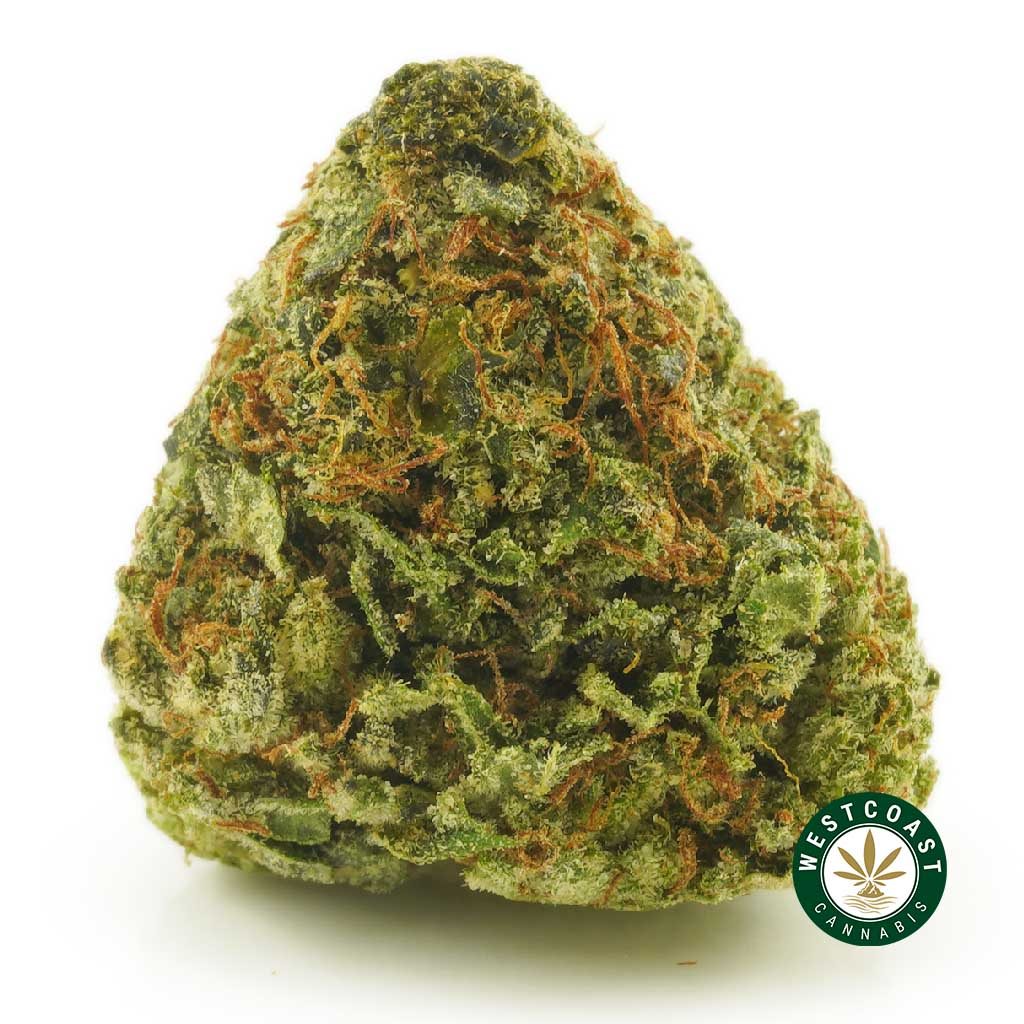 Buy Cannabis Death Bubba at Wccannabis Online Shop