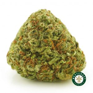 Buy Cannabis Sour Diesel at Wccannabis Online Shop