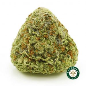 Buy Cannabis Gorilla Glue #4 at Wccannabis Online Shop