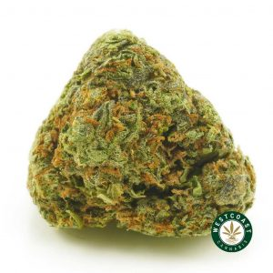 Buy Cannabis Grape Ape at Wccannabis Online Shop
