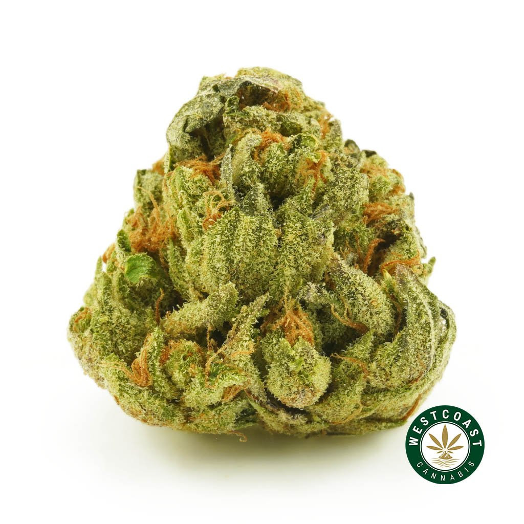 West Coast Cannabis 10% off + Crazy Purchase Giveaway Contest $