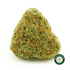 buy cannabis GSC online