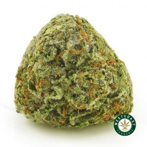 Buy Cannaibs Chemo Kush at Wccannabis Online Shop