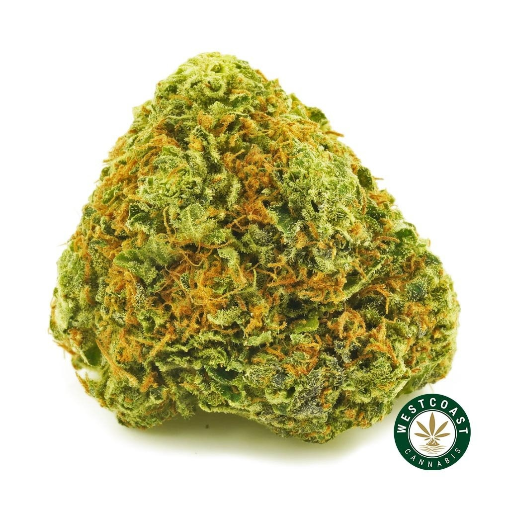 West Coast Cannabis Thanksgiving Sale 10% Off + Monthly Giveaways