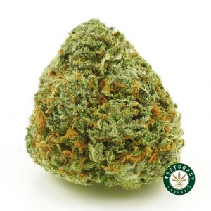 buy cannabis 4 star general online