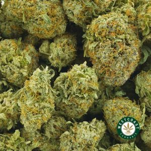 buy cannabis kryptonite online