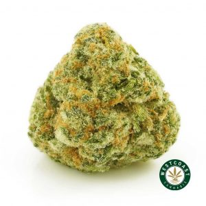 buy cannabis blue jager online