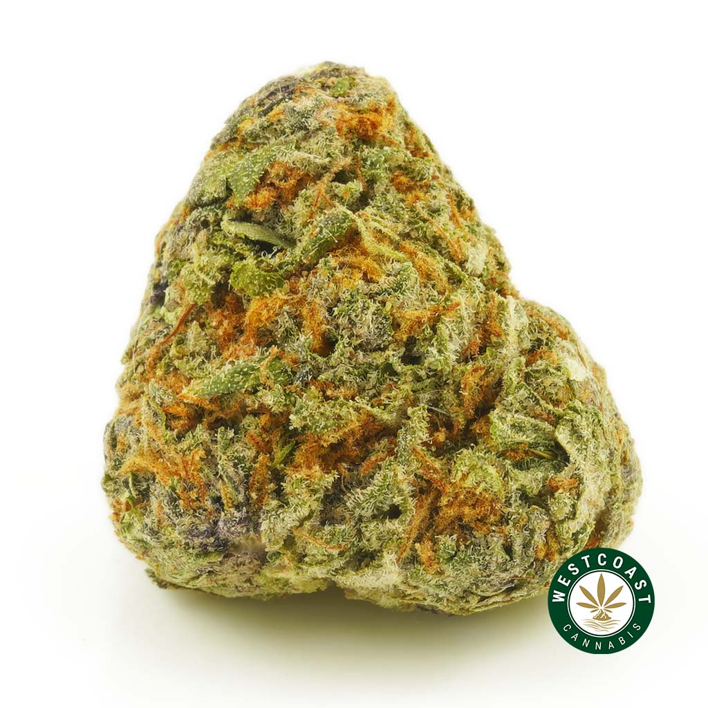 buy cannabis jager online