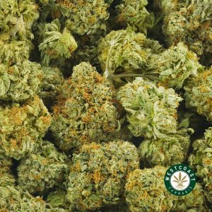 buy-cannabis-kushberry-M396A