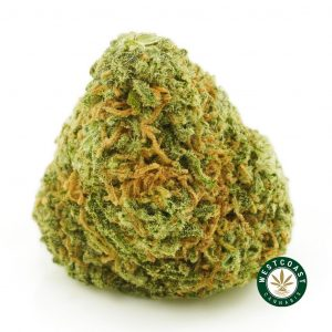 buy cannabis strawberry cough online