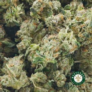 BUY CANNABIS DEATH BUBBA ONLINE