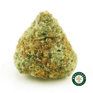 BUY CANNABIS GUAVA CAKE ONLINE