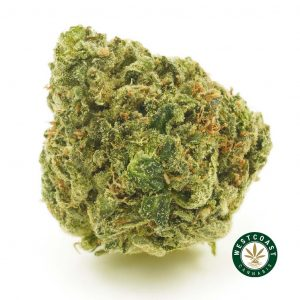 BUY CANNABIS SPACE MONKEY ONLINE