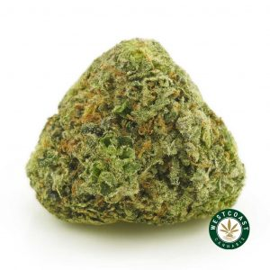Buy Cannabis High Octane OG at Wccannabis Online Shop