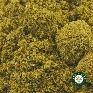 Buy Kief Blueberry Kush at Wccannabis Online Shop