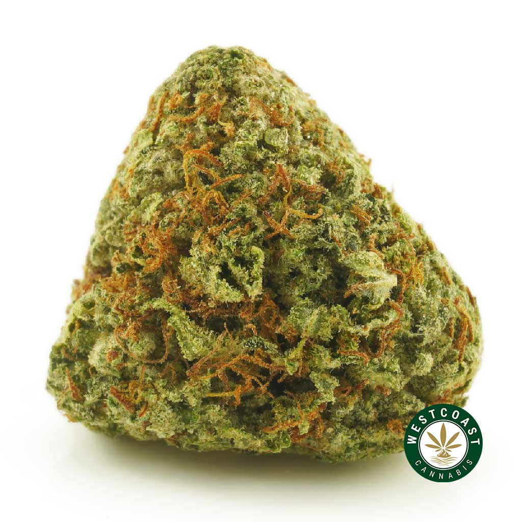 Buy Cannabis OG Kush at Wccannabis Online Shop