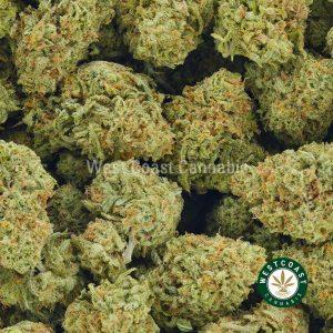 Buy Cannabis Mandarin Cookies at Wccannabis Online Shop