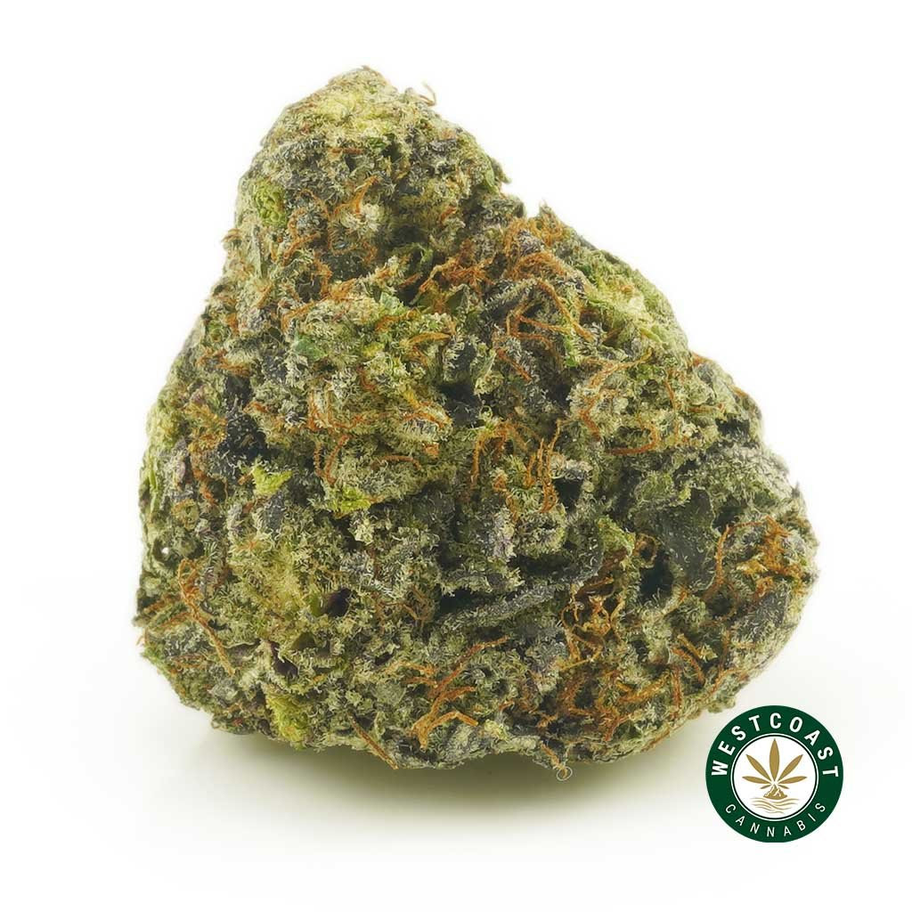 West Coast Cannabis Remembrance Day Sale 10% Off + New Drops