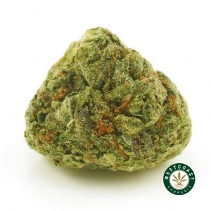 Buy Cannabis Diablo Death Bubba at Wccannabis Online Shop