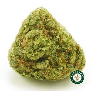 Buy Cannabis Lemon Meringue at Wccannabis Online Shop