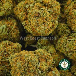 Buy Cannabis Pink Bubba at Wccannabis Online Shop