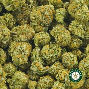 Buy Cannabis Honey Badger at Wccannabis Online Shop
