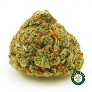 Buy Cannabis Lemon Haze at Wccannabis Online Shop