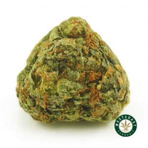 Buy Cannabis Pink Diesel at Wccannabis Online Shop