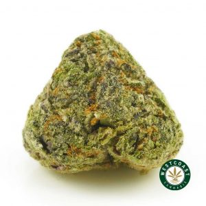 Buy Cannabis Grapefruit Diesel at Wccannabis Online Shop