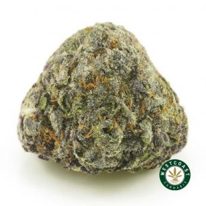 Buy Cannabis GGC at Wccannabis Online Shop